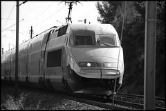 One day on the rail III (RUCgost) Tags: france color train graffiti metro rail railway chrome vandal graff couleur voie ferrée sncf ter