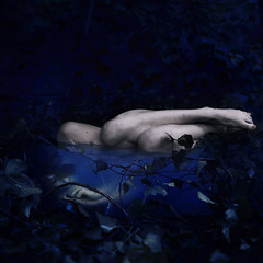 preservation of fairytales (brookeshaden) Tags: ice water fairytale outside trapped vines dusk decay explore block frontpage preserve 2yearbirthday brookeshaden