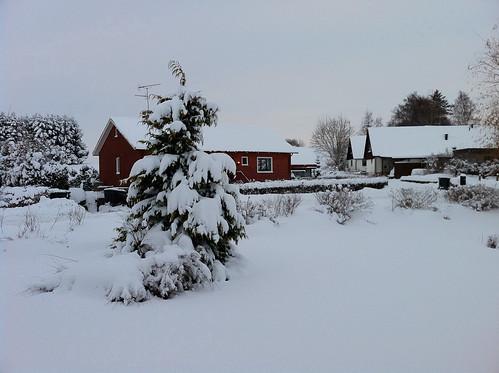 Vinter i Svedala