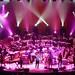 Birmingham - 06/12/10 - Steve Bird