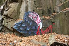 Eyesor (carnagenyc) Tags: graffiti newjersey nj vulture eyesor