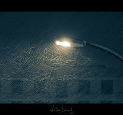 Snowy night (Antonin Douard) Tags: street light snow building window lampe lumire neige lightning rue btiment fenetre immeuble lampadaire batiment clairage