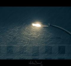 Snowy night (Antonin Douard) Tags: street light snow building window lampe lumière neige lightning rue bâtiment fenetre immeuble lampadaire batiment éclairage