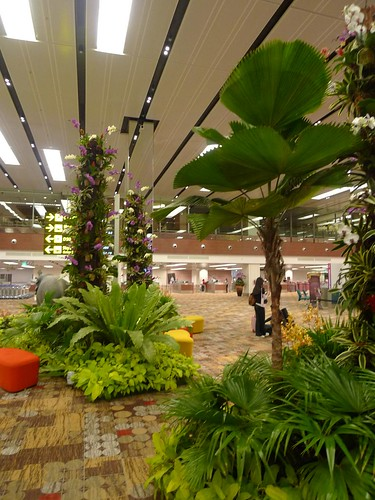 Experiential Marketing @ Changi Airport