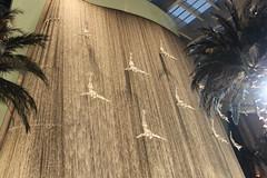 Skydive Dubai DZ Fazza adrecalina_76 (adrecalina) Tags: world sky skyline mall fun flying jump dubai wind para extreme uae free tunnel pd palm volo emirates will cielo salto skydive tandem omar flyers parachuting aereo castelli burj libero alessandro windtunnel volare freefly adrenalina saltare paracadutismo porry estremo skidiving poretti fazza sinapsi saltointandem dreca adrecalina alhegelan fazzasky