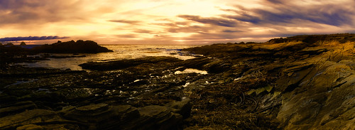 Pt. Lobos Panoramic Sunset