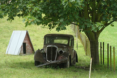 1937 Morris 12 (Home Land & Sea) Tags: old newzealand car rural rusty nz pointshoot sonycybershot hawkesbay 1937 dsch3 morrismotorcompany morris12 homelandsea
