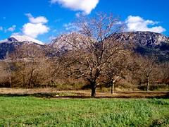 ΟΡΕΙΝΗ ΚΟΡΙΝΘΙΑ -KORINTHIA MOUNTAIN