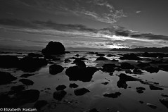 Got my tripod wet.  But hey.  The egrets fly in the sky at sunset. (Elizabeth Haslam) Tags: ocean california sunset sea sky blackandwhite sun seascape monochrome reflections rocks pretty earth highway1 sansimeon morrobay centralcoast cambria morrorock 2010 skywater highway46