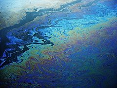 Oil Slick (Thought Knots Design) Tags: oilspill rainbow slick oil thought knots design tkd thoughtknots brand logo create creative creatively creation artwork portfolio catalogue photography graphic future funk pop colours colors color colour thoughtknotsdesign thoughtnautical nautical life live natural antigonish atlantic ocean east coast maritime grime canada canadian novascotia artist photo art abstract surreal