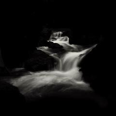 water dance (nlwirth) Tags: longexposure monochrome negativespace waterfalls yup f22 cataractfalls mounttamalpaisstatepark 16seconds nondfilter marincountyca nlwirth zeiss2470mm yyyyup