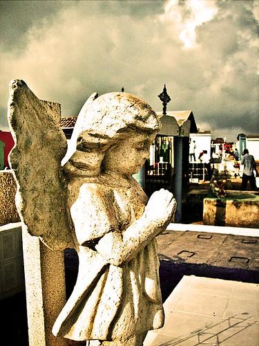 Ángel en el cementerio Juárez. by LKML