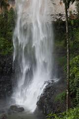 Purling Brook Falls (Razmataz') Tags: waterfall goldcoast purlingbrookfalls springbrooknationalpark
