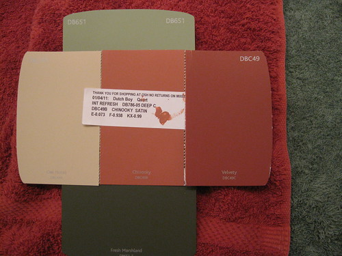 "Dutch Boy ""Chinooky"" Paint Sample"