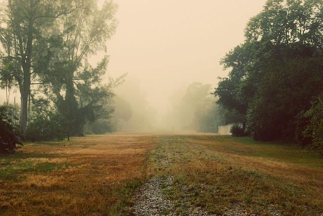 Foggy morning.