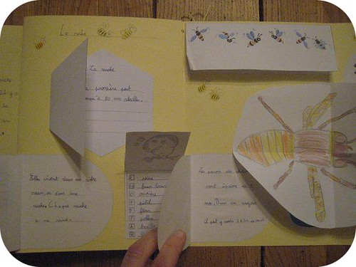 lapbook abeille 11