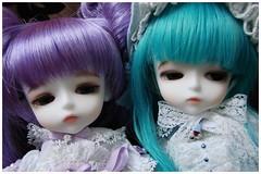Pury & Pury (Etoilebleue) Tags: yellow angel doll lashes sp tiny devil bjd dollfie abjd latidoll lati pury