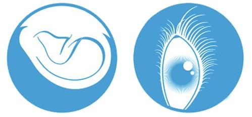 Eye and Ear Ausstellung, Modenschau und Lesung