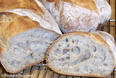 Sourdough starter tips