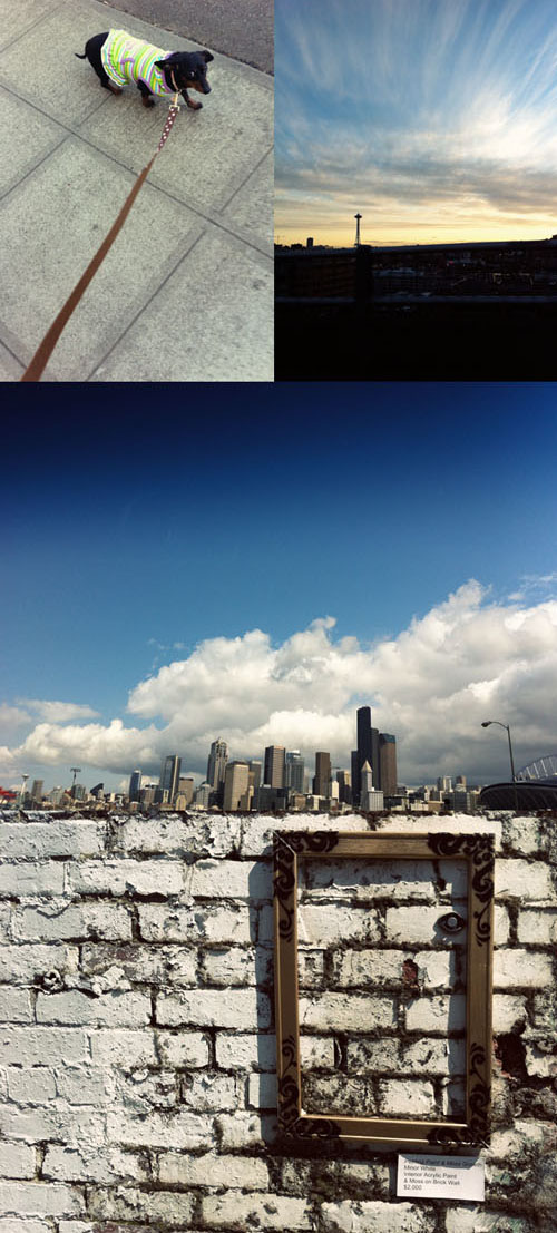 seattle_iPhone