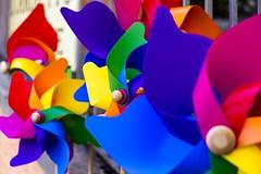 waiting for the wind (Fr@tes) Tags: castellucciodinorcia castelluccio colori colors explore canon eos fioritura