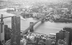 New York City (mitalpatelphoto) Tags: brooklynbridge buildings cityscape downtown explore freedomtower horizontal landscape manhattan newyork newyorkcity nikon ny photography sightseeing skyline skyscraper travel usa visit wallstreet worldtradecenter unitedstates us
