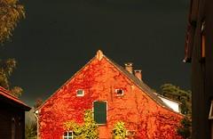 Storm & Sun meeting at the farm (Poshtolka Sharka) Tags: sun storm holland colors contrast canon zon ulicoten 400d