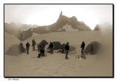 Campo CAI (Mazzotex) Tags: alpinismo montagna montblanc paesaggio biancoenero controluce valleblanche ghiacciaio dentedelgigante coldesflambeaux