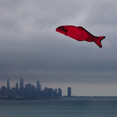 Fish flying over Chicago