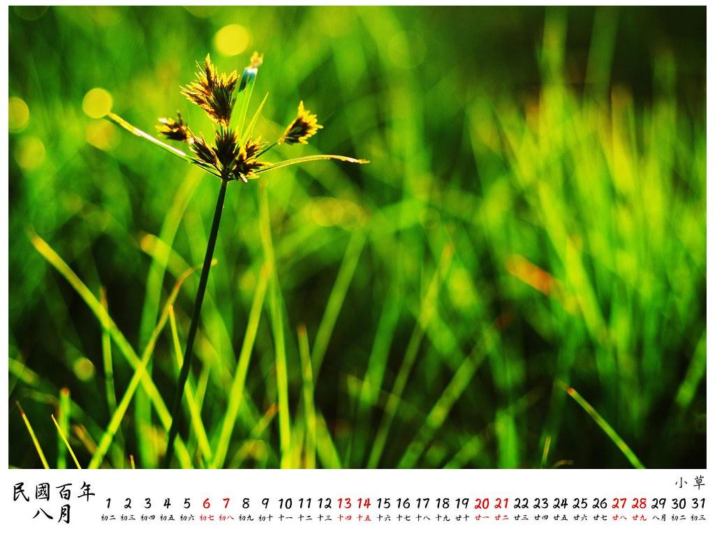 2011 桌曆6 8月