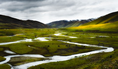 The Tibetan grasslands at 4100mts (nico3d) Tags: plateau tibet tibetan eastern tibetanplateau