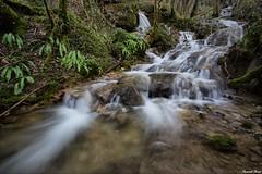 ruisseau du moulin de saillard   **Amondans** (francky25) Tags: de moulin du tamron hdr doubs ruisseau comté franche nd8 1024mm amondans saillard