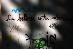La belleza es tu cabeza (Zelda was a writer) Tags: cabeza barcellona labelleza serialwriters