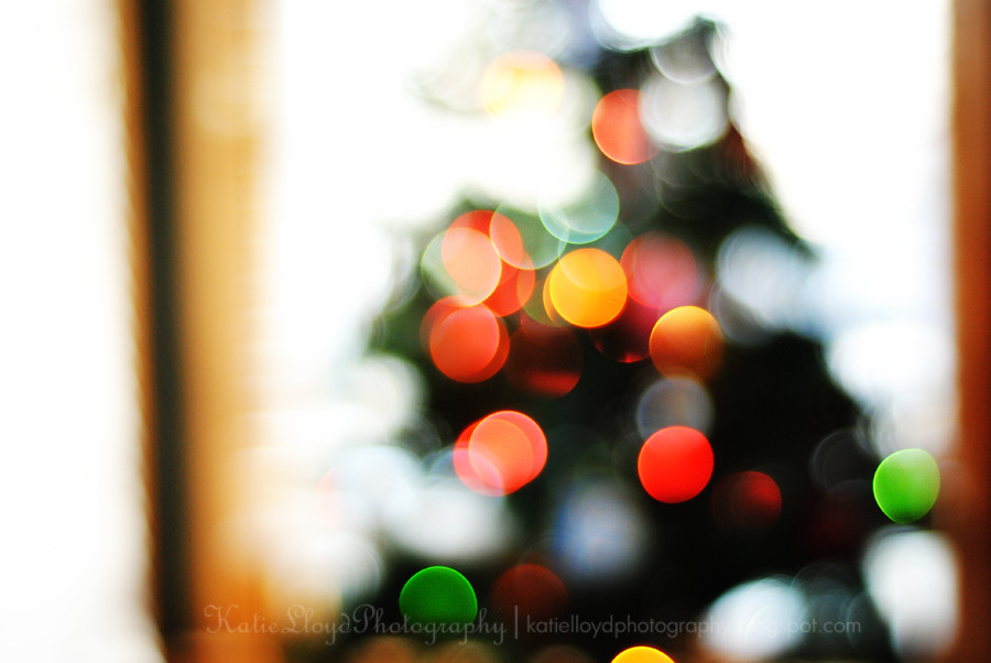 Tree-bokeh-medium