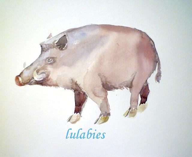 lulabies boar
