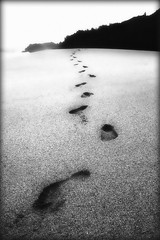 Come to Me (laura's POV) Tags: beach hawaii sand pacific footprints shore kauai theunforgettablepictures platinumheartaward bestcapturesaoi elitegalleryaoi mygearandmepremium mygearandmebronze mygearandmesilver mygearandmegold mygearandmeplatinum lauraspointofview lauraspov