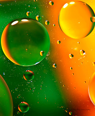 Macro Colorful Bubbles (Paul Green Photography) Tags: uk light red england orange macro colors yellow canon eos colorful unitedkingdom vibrant style bubbles photograph greens 7d ambient macroshot clevedon 24105 canonusm canon7d canon24105lens