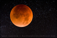 Blood Moon (Sean Bagshaw) Tags: moon eclipse total lunareclipse totaleclipse