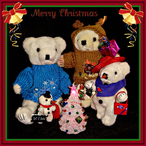 Merry Christmas from the Bears!