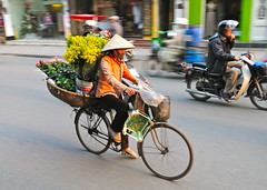 Hanoi flowers (jeremyhughes) Tags: street flowers urban motion color colour bike bicycle movement nikon colorful cyclist vietnam colourful flowervendor nikkor hanoi panning flowerseller d300s