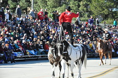 Fancy Riding (Calsurferboy) Tags: horses usa cowboy parade socal backwards pasadena roseparade rider coloradoblvd 2011 twohorses horsetricks