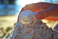 Light of creation (Laurarama) Tags: family summer sculpture sand nikon hand shell explore create 1855mm conceptual gettycollection ourdailychallenge d3100 gapaug collectionp