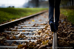 Walk this way (100% made in Friuli) Tags: autumn love leaves foglie canon germany bokeh frankfurt railway 5d autunno amore germania binari francoforte 85mmf18