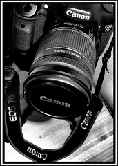 Canon, it's all in the name. (CWhatPhotos) Tags: canon eos 7d 18200mm lens f35 digital slr camera cwhatphotos picture pictures fotos foto image images photos photo that have which contain front glass zoom by olympus epl1 f3556 is imagestabilization stabilization efs stabilizer pen olympuspen retro look bge7 bg e7 battery grip blackandwhite blackwhite photography monochrome monochromed flickr