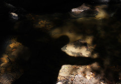 Shadows in the river at the Dunino Den in Fife. (Shandchem) Tags: shadow scotland cross fife den dunino