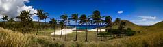 Isla de Pascua (Anakena) (jomme) Tags: trees panorama beach canon easter de island 350d pacific wind pano pascua palm adobe di isla isola lightroom pasqua nui rapa anakena mohai mohais