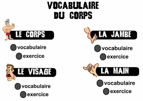 exercice_corps_humain