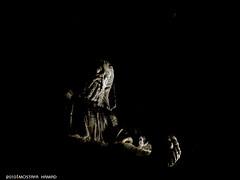 3 (MOSTAFA HAMAD | PHOTOGRAPHY) Tags: pictures sky italy abstract black bird art love photoshop canon germany photography is europa alone fotografie photographie iraq 110 creative ixus fotografia psd hamad    mostafa fotografa fotografering  iaq fotoraflk
