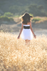 Warmth (Extra Medium) Tags: family portrait woman tree girl field hair wind wheat maddy madison becky sundress agoura goldengrass rimlighting
