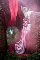 Wonderland : The Briar Rose (Kirsty Mitchell) Tags: bridge fairytale forest princess katie fantasy wonderland enchanted galleonship kirstymitchell elbievaneeden thevoyagecontinues